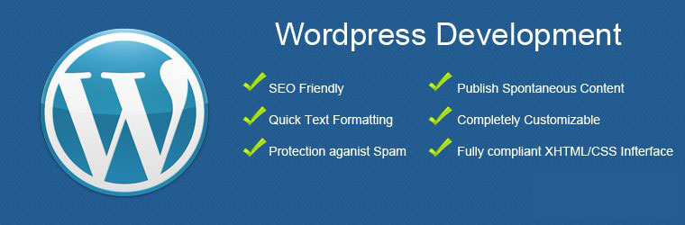wordpress training in laxmi nagar delhi