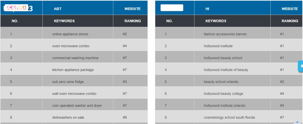 Search Engine Optimization seo report
