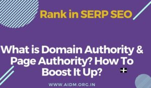 What is Domain Authority & Page Authority? How To Boost It Up?