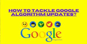 How to tackle Google algorithm updates?