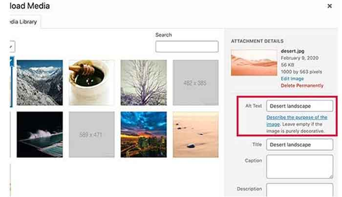 Optimizing Images in WordPress for SEO